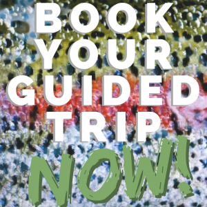 Book Your Trip